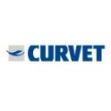 Macchine per il vetro Curvet - Fallimenti e Aste Online