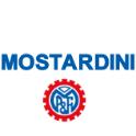 Prodotti Mostardini all'asta online - Aste giudiziarie